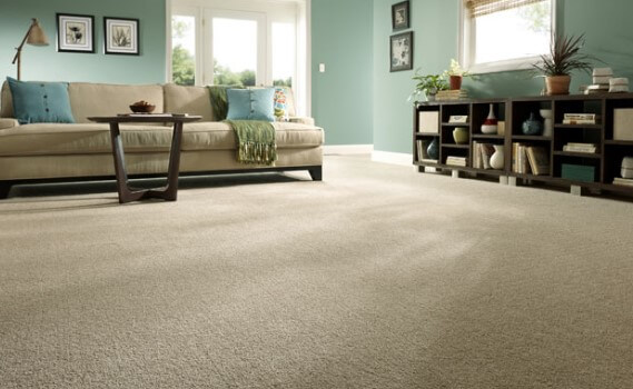 How to choose a carpet for the living room