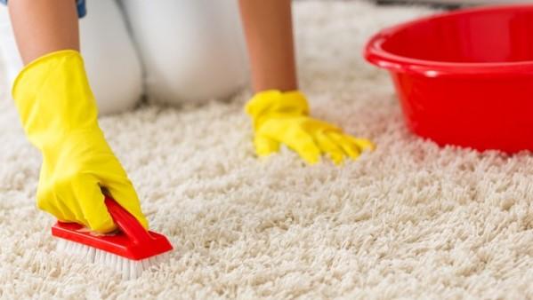 Жесткой щеткой очистите поверхность ковролина